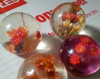 Botanical Paperweights