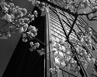 Chicago Photography Print - John Hancock Building - Chicago Landmark Photo