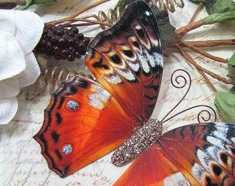 Butterfly Embellishments Autumn Sunrise