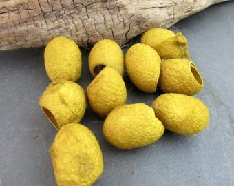 10 Goldenrod Yellow Naturally Dyed Silk Cocoons