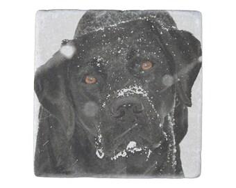 Black Lab Coasters - Black Lab Art 20SNGLB - Labrador Coaster - Black Lab Gifts - Art Coasters - Dog Coasters - Coasters For Drinks -
