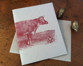 Greeting Card, Cow