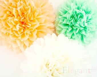 Peach & mint theme poms/ Pompoms/  paper flower/ flower balls/ wedding decoration/ paper flower poms/ baby shower/ engagement party decor