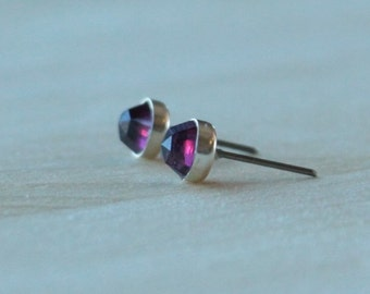 Rose Cut Rhodolite Garnet Gemstone 6mm Bezel Set on Niobium or Titanium Posts (Hypoallergenic Stud Earrings for Sensitive Ears)