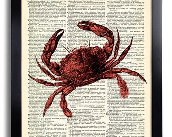 Crab Art Print on Vintage Book Page, Bathroom Wall Decor, Bathroom Art Print, Vintage Crab Illustration Artwork, Sea Life Art Print 299