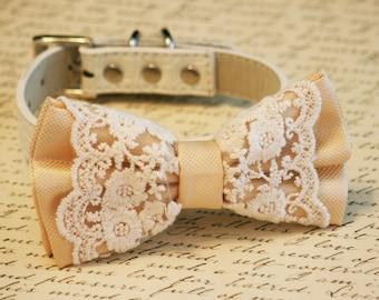 Ivory Lace Dog Bow Tie collar, Pet wedding accessory, boho