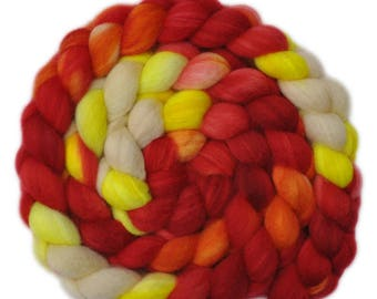 Hand painted roving - Superwash Blue Faced Leicester (BFL) / Nylon 80/20% wool top spinning fiber - 5.0 ounces - Head Start 2