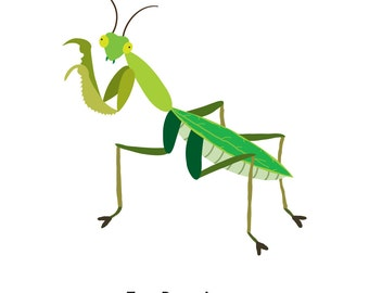 Praying Mantis (4x4 Card)