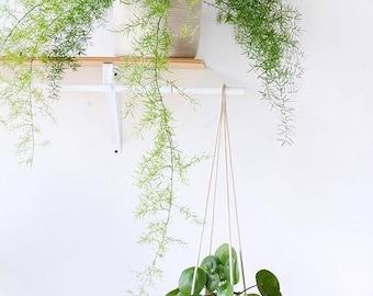 6inch Hanging Planter Basket