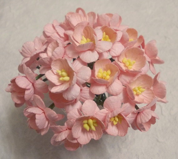 30 paper flowers size 1 mulberry paper craft flower cherry 30 paper flowers size 1 mulberry paper craft flower cherry blossoms wedding bouquets and crafts light pink paper cherry blossoms from sjsupplies42 mightylinksfo