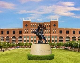 FSU Stadium, Florida State Seminoles, Doak Campbell, Man Cave, Orange Bowl, College Dorm, Football Art, Sports Art, FSU, Large Art, Fine Art