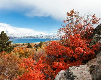 Brilliant Bear Lake Fall-  Landscape Utah Photography 12x8