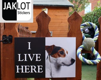 JACK RUSSELL - I Live Here, Dog Warning Outdoor / Indoor Gate Fence Wall Sign