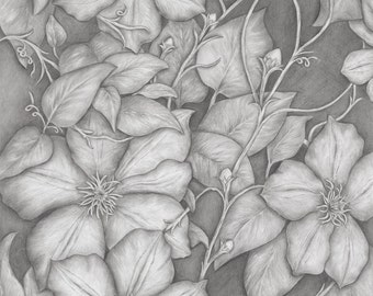 Flower Art Print, Fine Art Giclee of Original Graphite Drawing Vine of Life, Black and White Wall Art, Home Decor Wall Art, Flower Artwork