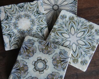 Oceana - kaleidoscope coasters - Haeckel sea life