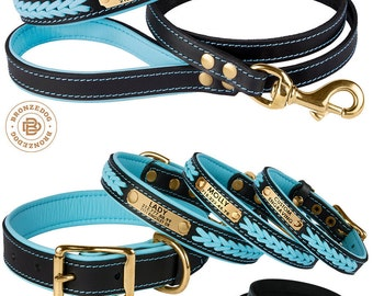 Dog Collar Leash Set Blue Leather Personalized Custom Brass Hardware Soft Padded