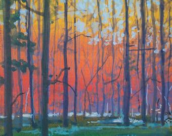 Trees at Dusk (2)