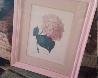 Vintage Redoute Hydrangea Print Cottage Chic Romance