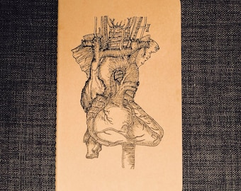 Hand drawn Anatomically Correct Heart Moleskine Notebook