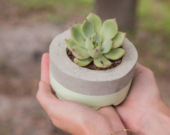 Mother's Day Gift for Her, Small Concrete Planter, Seaside Green