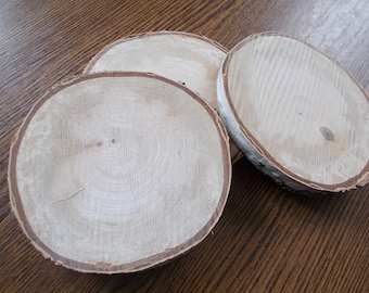 25 Wood slices, birch slices, 3.5-4.5'', table decor, wood decor, rustic wedding decor, tree Branch Slices for Craft, Natural Wood Slices