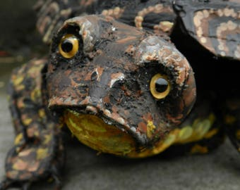 Blanding's Turtle - Art Shoe Sculpture