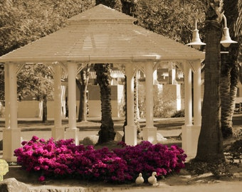 """Park scene with Gazebo and 2 White Ducks in Sepia & Selective Color """"Meet Me At The Gazebo"""" Art Print Photograph Wall Hanging Home Deco"""