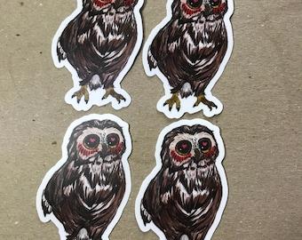 Owl loves you sticker