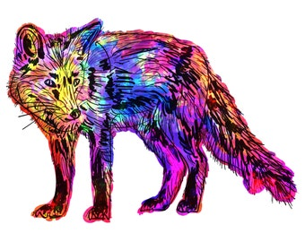 "Fox(6) Giclée Print - Cavanata - 8"" X 10"" Fox Graphic Fine Art Print, Original Illustration, Animal Art"