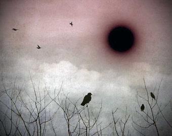 "Cloudy Sky Photography, Cloud Photography, Surreal Art, Vintage, Nursery Art, Whimsical Photography, Fine Art Photography, ""Black Hole Sun"""