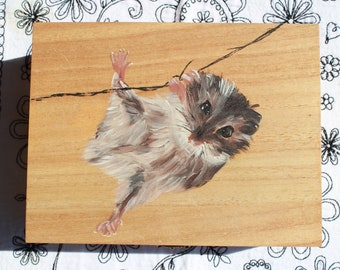 Tea Box Hamster Rodent