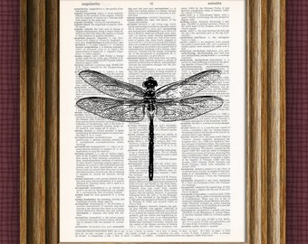 DRAGONFLY beautifully upcycled vintage dictionary page book art print