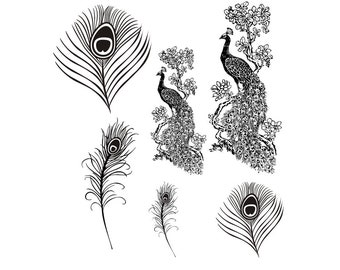 full set of PEACOCK unmounted rubber stamps, exotic bird, feather, fantasy, wedding, Sweet Grass Stamps