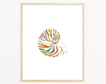 Nautilus Shell Art Print. Watercolor Shell Art Print. Coastal Gallery Wall Art Print. Serene Coastal Painting. Large Living Room Art Print.