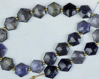 20 pieces faceted fancy Iolite hexagon beads 12 x 14 mm approx