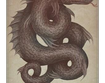 Gloucester Sea Serpent -  A4 art print