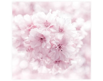 Nursery Art Photography Print, Cherry Blossom