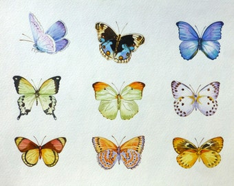 Watercolor Butterflies Original Painting - 11x14 Butterfly
