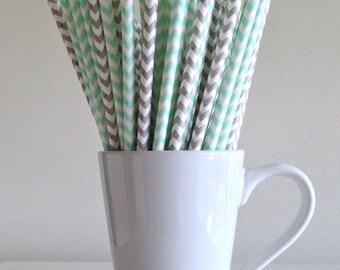 Mint and Gray Paper Straws Mint Green and Grey Chevron Party Supplies Party Decor Bar Cart Cake Pop Sticks Mason Jar Straws Graduation