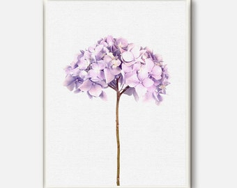 Hydrangea Flowers, Botanical Prints, Flower photography, Hydrangea Photo, Botanical Photo, Flowers Art, Floral Wall art, Living room decor