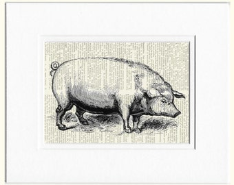 pig dictionary page print