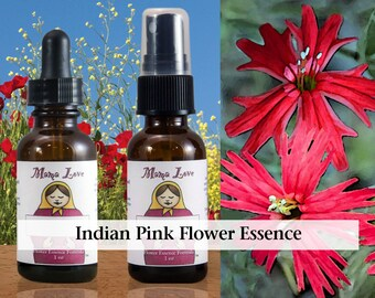 Indian Pink Flower Essence, 1 oz Dropper or Spray for Ability to Focus Despite Distraction or Stress