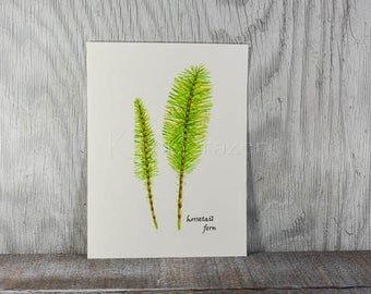 Fern watercolor painting, fern art, horsetail fern original watercolor painting, 9x12