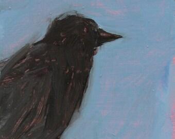 Black Crow - original painting, original art, small painting, fine art, affordable art by Irene Stapleford