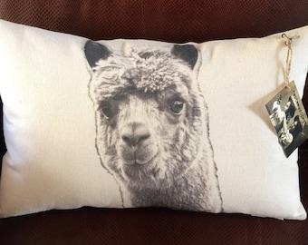 Alpaca Pillow / Daisy