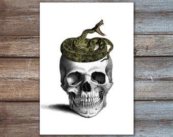 Poster Skull mit Snake-Print