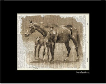 Vintage Mare and Colt Illustration - Dictionary Art Print - Book Art Print No. P364