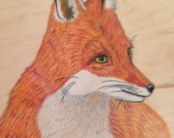 Fox Afire: Prismacolor pencils on oak wood panel