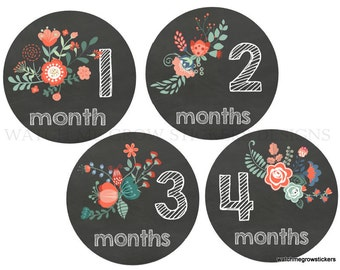 Month Stickers Baby Monthly Stickers Baby Milestone Stickers Baby Stickers Monthly Baby Stickers Baby Month Stickers Girl Monthly Stickers