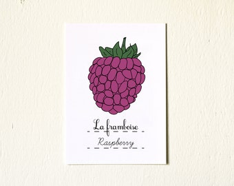 Raspberry Nursery Art Spring Fruit  - 5x7 Fine Art Print - Pink Botanical Garden Nature Farmers Market baby girl minimalist